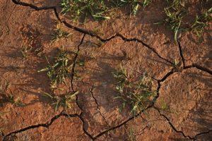 terreno escarificar
